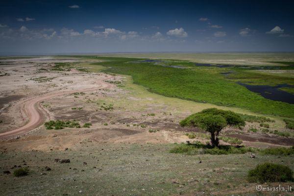 kenya-places-amboseli-img-1260D53A6AAF-AF20-7A27-8FB9-4CC87E8C6316.jpg