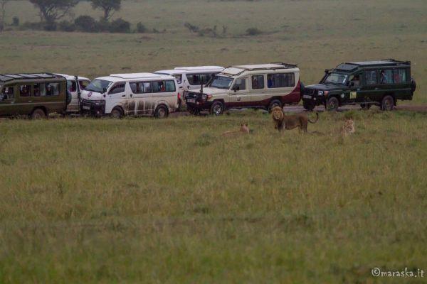 kenya-places-img-985497C1BCDB-723E-4F9F-2860-E80260C4744E.jpg