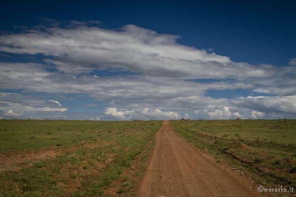 kenya-places-masaimara-img-0213F11304D8-160A-6DC4-80AB-762182F86509.jpg