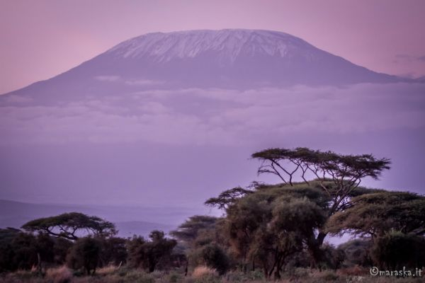 kenya-places-amboseli-img-1029C233A907-1194-3E32-6CFF-64B9979576E9.jpg