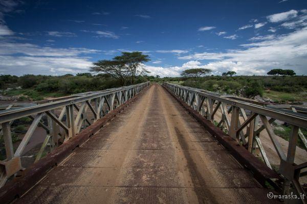 kenya-places-masaimara-img-9269DA29EEED-45AE-0FBB-6F53-EE509A336F45.jpg